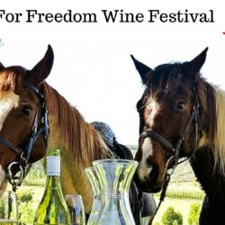 Eagle Cleaners Sponsors Equines for Freedom Wine Festival