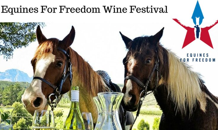 Equines For Freedom  4th Annual Wine Festival will be held at Lazybrook Park in Tunkhannock on Saturday, June 15th!